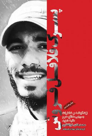پسرک فلافلفروش: زندگینامه و خاطرات طلبهی جانباز، شهید مدافع حرم محمدهادی ذوالفقاری